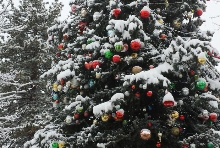 A BIG BEAR WHITE CHRISTMAS